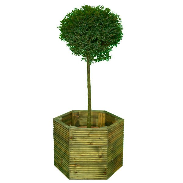 Decking-Planter