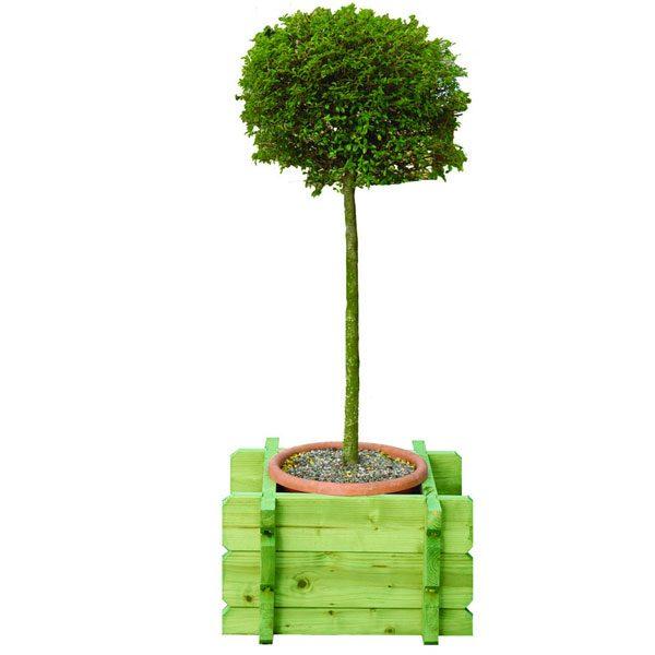 Square-Planter